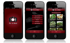 Pic-A-Meal app design